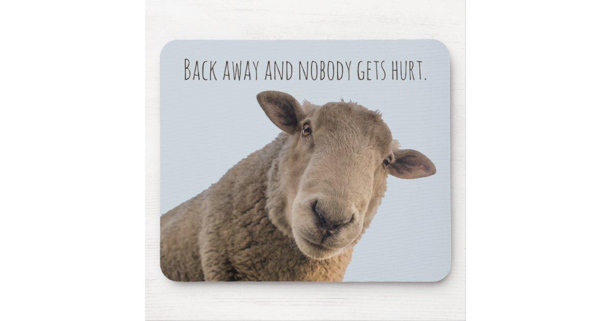 Sheep funny warning back away attack sheep mouse pad | Zazzle ...