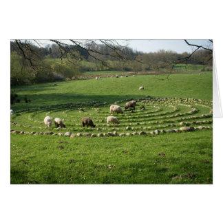 Sheep Grazing a Labyrinth - Calmness Card