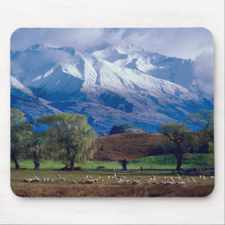 Sheep grazing below the snow-capped Harris Mouse Pad