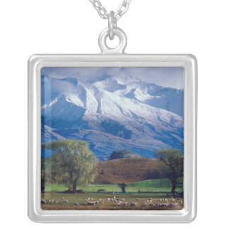 Sheep grazing below the snow-capped Harris Silver Plated Necklace
