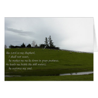 Sheep Grazing in Green Pasture Near Pond Greeting Card