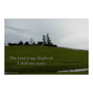 Sheep Grazing in Green Pasture Near Pond Poster