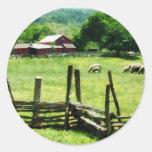 Sheep Grazing in Pasture Classic Round Sticker