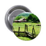 Sheep Grazing in Pasture Pins