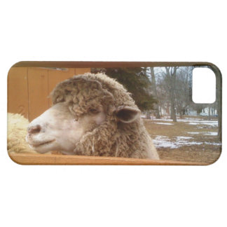 Sheep Guard - a Wholly Protector for your Cell iPhone SE/5/5s Case