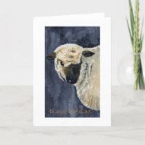 Sheep holiday card