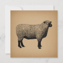 Sheep Illustration Vintage Art Invitation