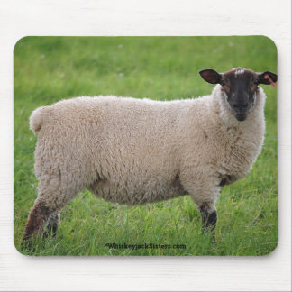 Sheep in a Grasss Field Mouse Pad