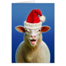 Sheep in christmas fever card