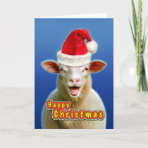 sheep in christmas fever holiday card