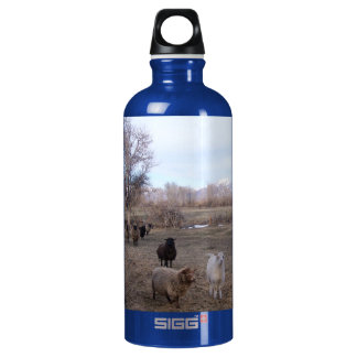 Sheep in Dry Pasture SIGG Traveler 0.6L Water Bottle