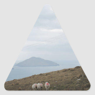 Sheep in Ring of Kerry, Ireland Triangle Sticker