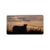 Sheep - in silhouette label