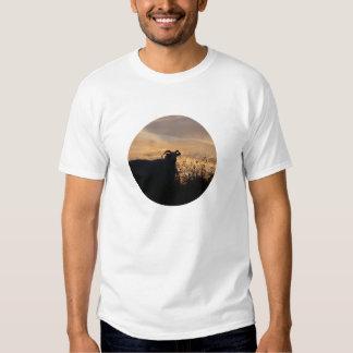 Sheep - in Silhouette T-shirt