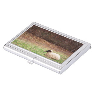 Sheep in the Meadow - Farm Nature Photography Case For Business Cards