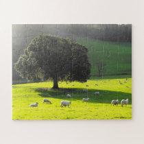 Sheep in the morning sunshine jigsaw puzzle