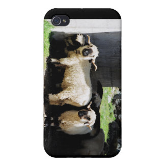 Sheep iPhone 4/4S Covers