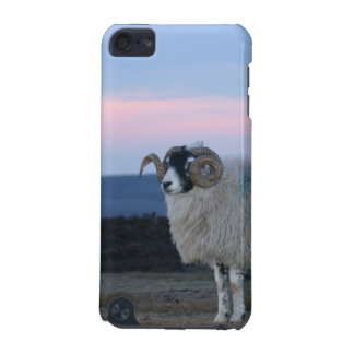 Sheep iPod Touch Case