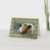 Sheep Lamb Blank Christmas Card