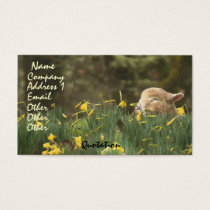 Sheep Lamb Ram Farm Animals Ranch Business Card