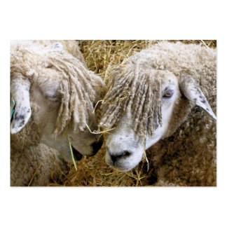SHEEP LARGE BUSINESS CARDS (Pack OF 100)