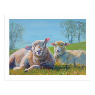 Sheep Laying down painting Family Portrait Postcard