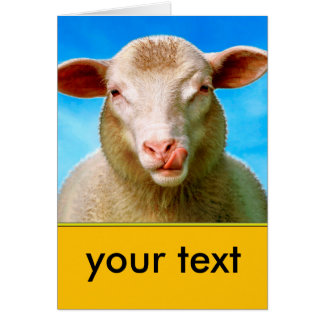Sheep Lucie - your text here Card