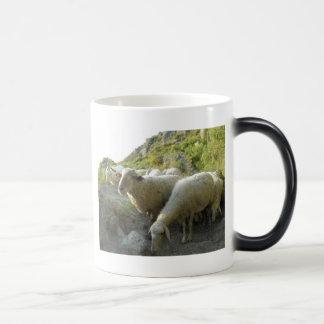 Sheep Magic Mug