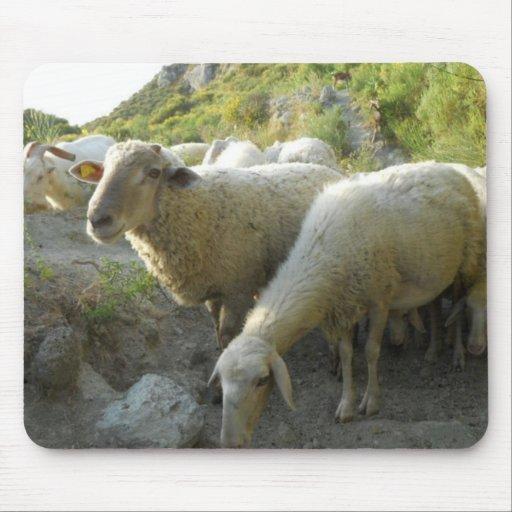 Sheep Mousepads