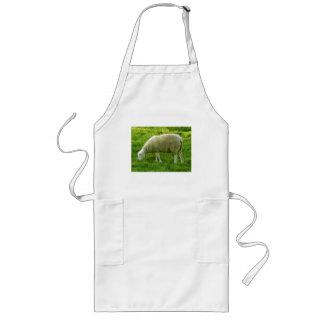 Sheep - Mouton Long Apron
