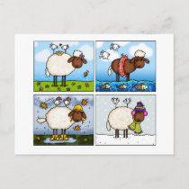 sheep of all seasons postcard