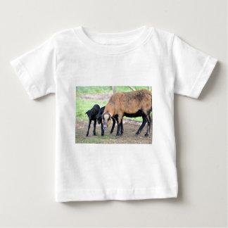 Sheep on Cameroun with lambs Baby T-Shirt