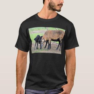 Sheep on Cameroun with lambs T-Shirt