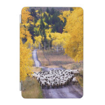 Sheep on Country Road iPad Mini Cover
