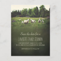 Sheep on Pasture | Family Reunion Save the Date Announcement Postcard