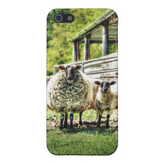 Sheep on the Farm iPhone 5 case