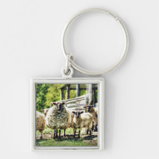 Sheep on the Farm Keychain