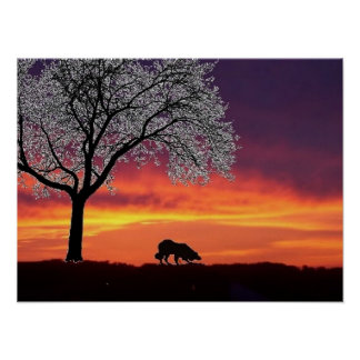 Sheep on the horizon 2...Border Collie Poster