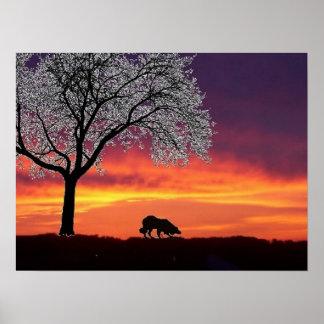 Sheep on the horizon 2...Border Collie Poster