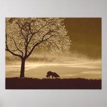 """Sheep on the Horizon 3""~Border Collie Poster"