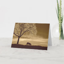 Sheep on the horizon~Border Collie Christmas Holiday Card