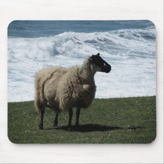 Sheep on wild south Devon coastline Mousepads