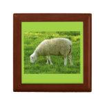 Sheep - Oveja Cajas De Recuerdo