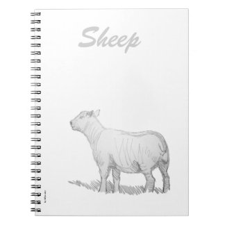 Sheep Pencil Sketch Note Books