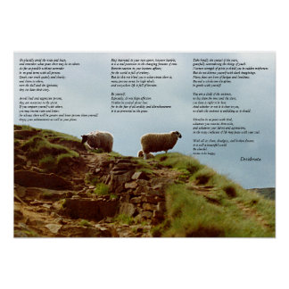 Sheep placidly in silence on Mountain Desiderata Poster