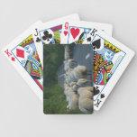 Sheep Playing cards