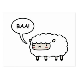 Sheep! Postcard