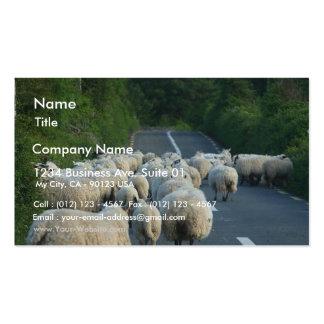 Sheep Roads Lambs Business Card