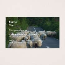 Sheep Roads Lambs Business Card