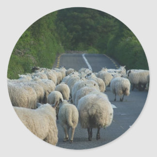 Sheep Roads Lambs Round Stickers